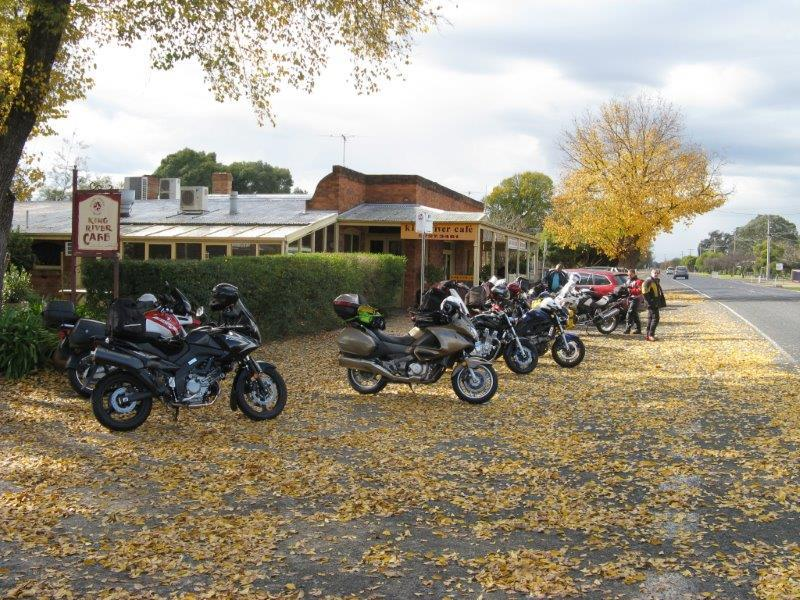 Autumn colour at Oxley 2011